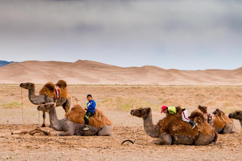 photo Gobi Desert. At a ger camp in Gobi Desert kids relax with their camels. untitled-413_zpsqhkbjs9j.jpg